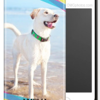 photo iphone case dog