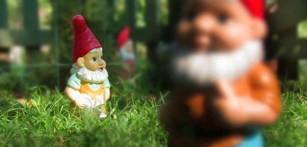 photo focus on background