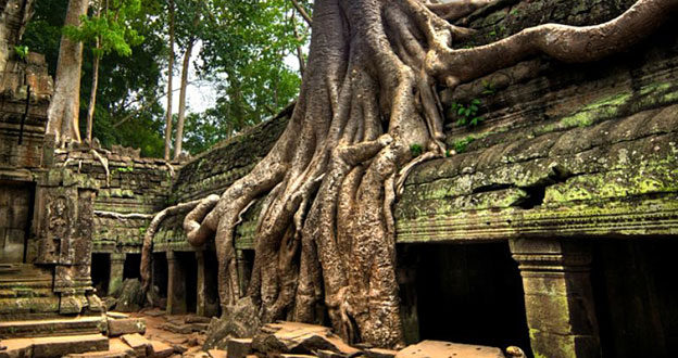 tample cambodia photography