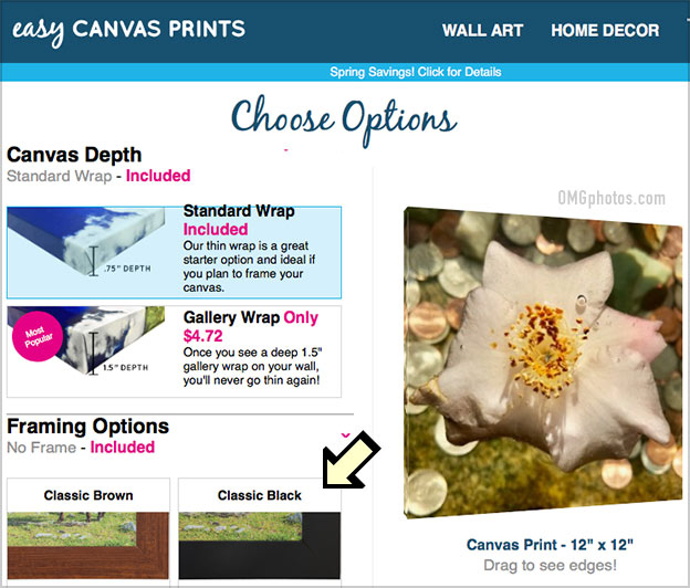 easy canvas prints review options