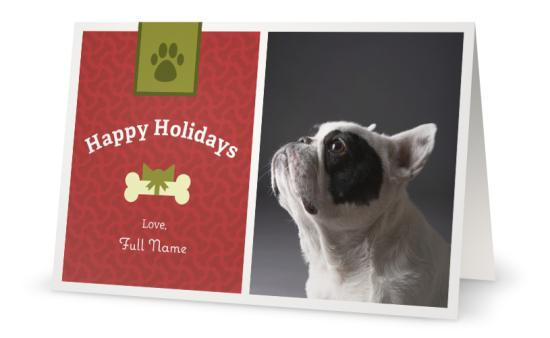 holiday card dog vistaprint